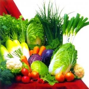 vegetariani-300x300.jpg